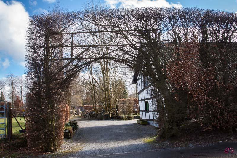 Höfener Heckenweg